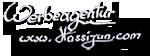 Werbeagentur hassijun - Ihre Homepage ist mein Anliegen!